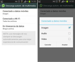 WhatsApp_Descarga_Autom (1)